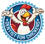 Dentist for Chickens: The Best Dentist Newcastle, NSW